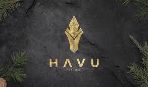 HAVU Gaming vuosikertomus 2019